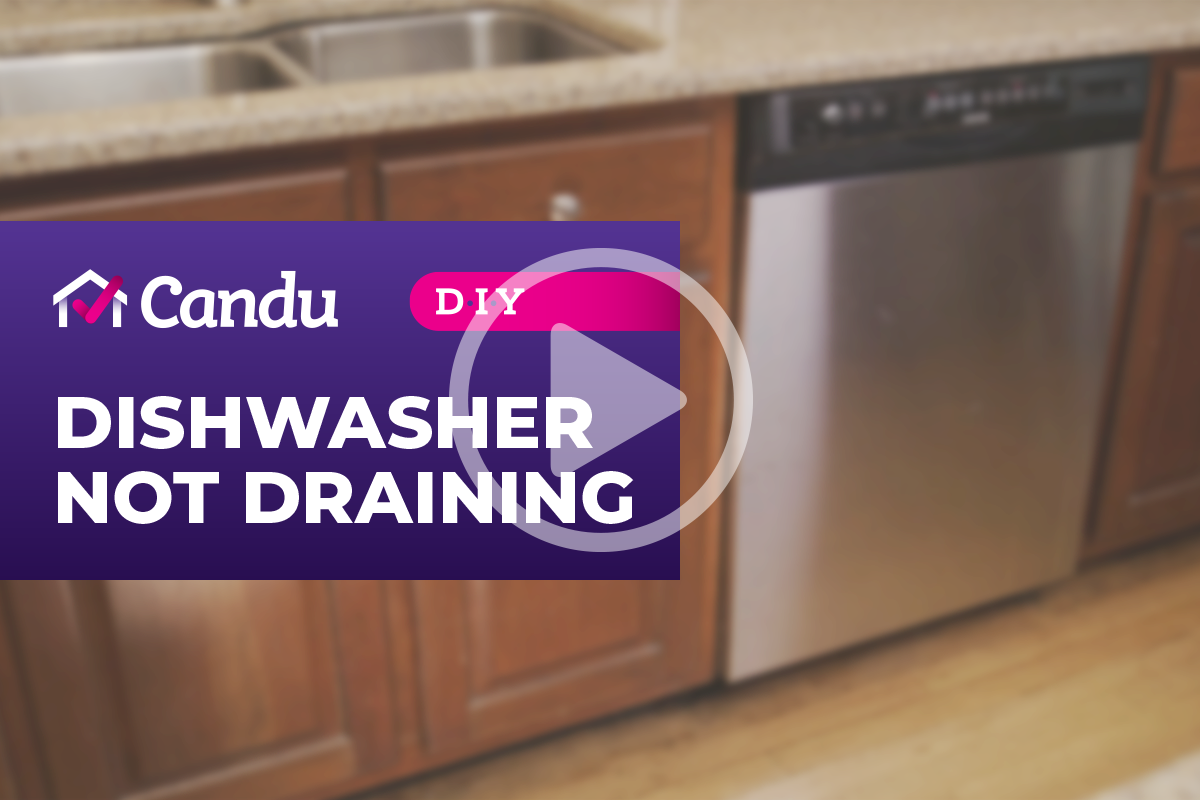 Dishwasher_cover.png