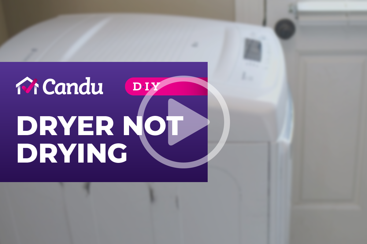 Dryer._coverpng.png